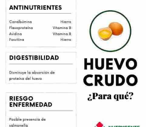 Valor nutricional del huevo crudo