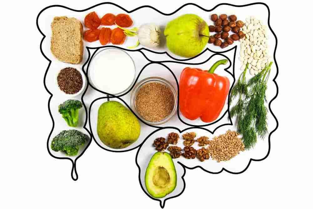 alimentos que mejoran y benefician la microbiota intestinal
