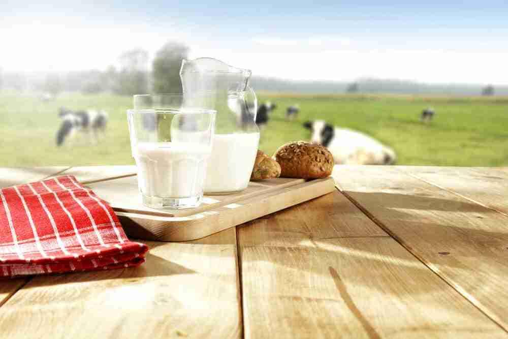 Un vaso con leche de vaca con lactosa y calcio