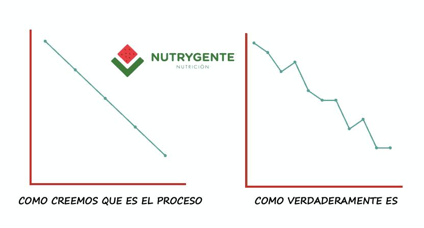 Gráfico sobre el proceso de perdida de peso