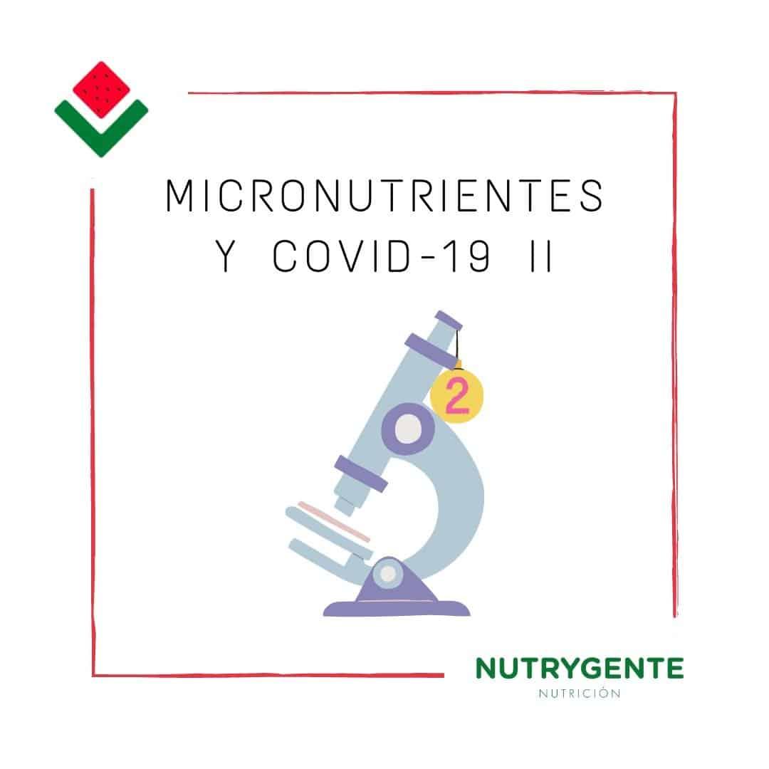 Nutricionistas hablando de la importancia de los micronutrientes en el tratamiento del COVID-19